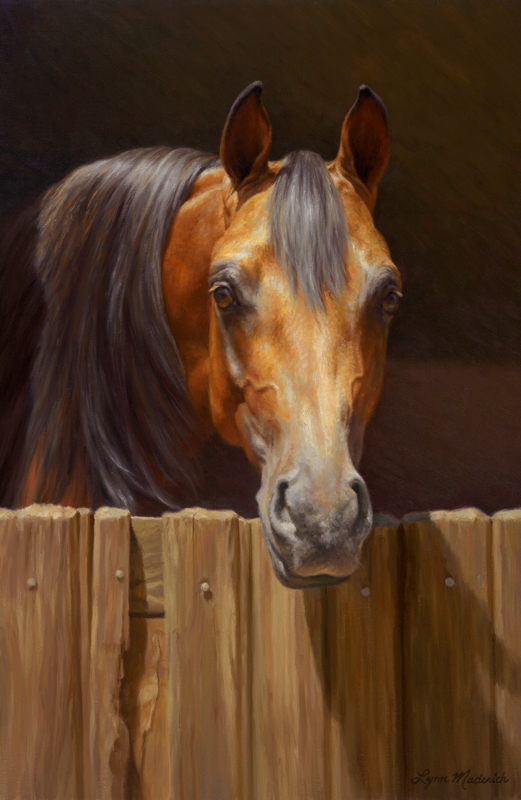 Equine archives lynn maderich fine art commissions for Window horses