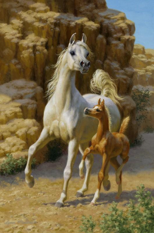 Desert Daughters